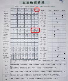 デューク 尿検査IMG_0785