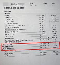 デューク 尿検査IMG_0784