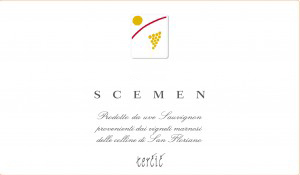 SCEMEN-300x175.jpg