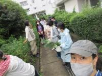 s-IMG_8116.jpg