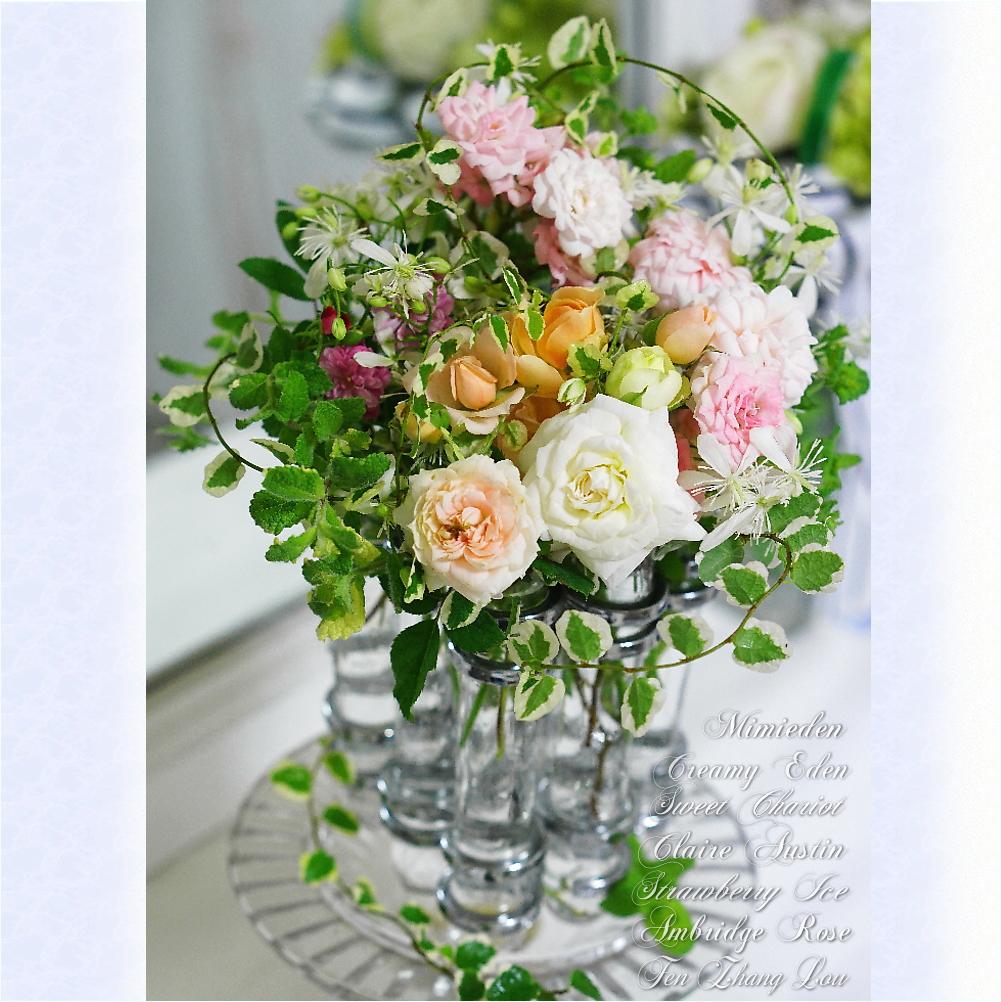 8-roses.jpg