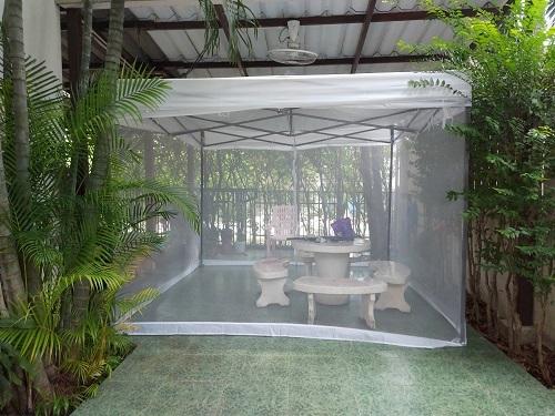 Net in the garden (1)