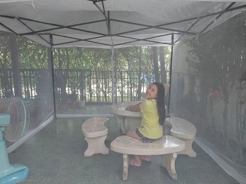 Net in the garden 4