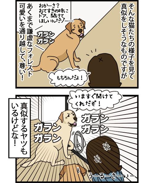 01092021_dogcomic2.jpg