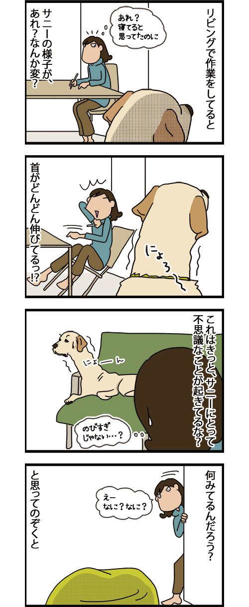 02082021_dogcomicB_1.jpg