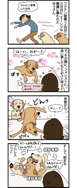 02092021_dogcomic_1.jpg