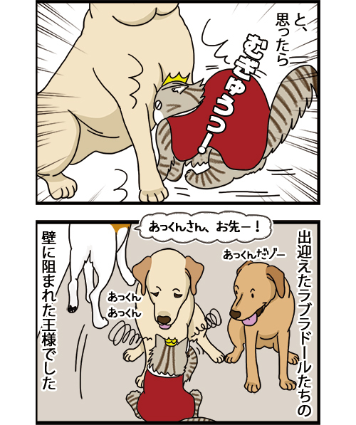 05072021_dogcomic_2.jpg