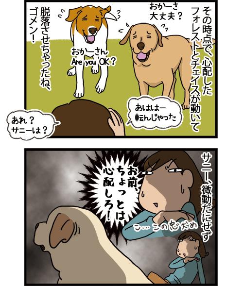 06072021_dogcomic_2.jpg