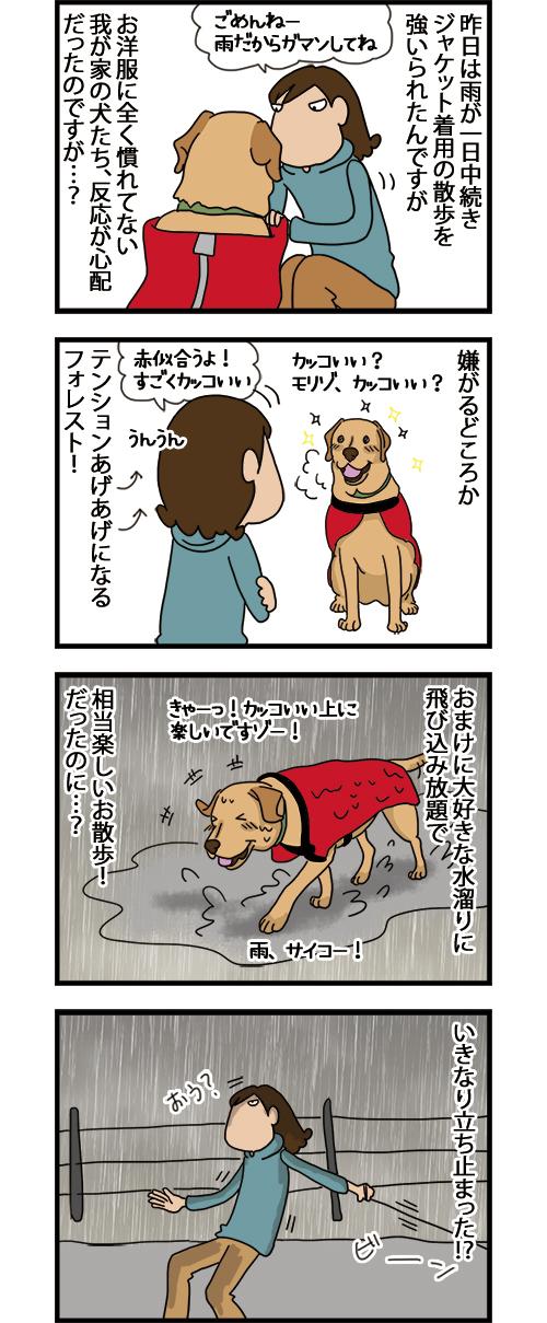 07072021_dogcomic1.jpg