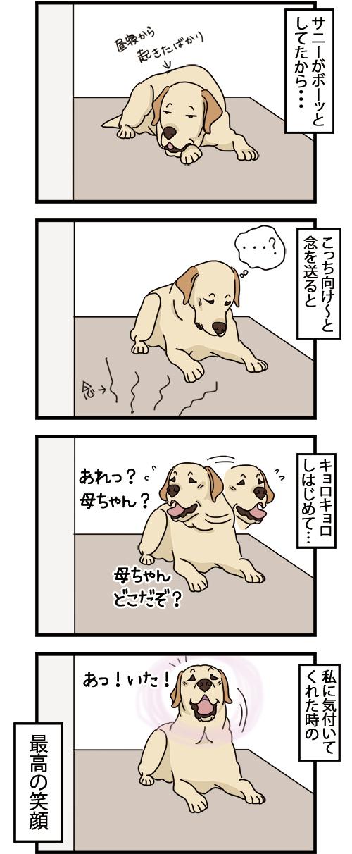 08102021_dogcomic_1.jpg