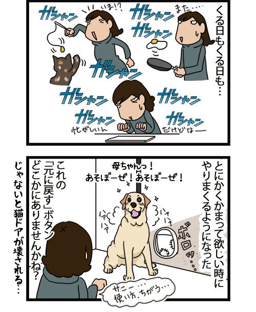 14062021_dogcomic_2.jpg