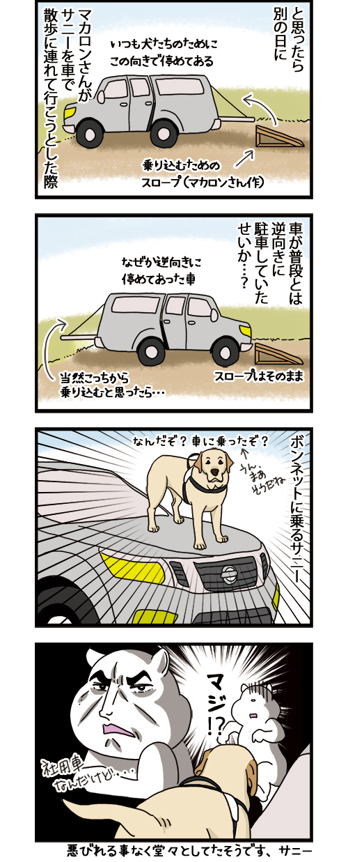 16062021_dogcomic_2.jpg