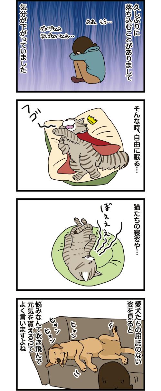16082021_dogcomic1.jpg