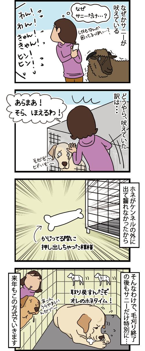 18102021_dogcomic_2.jpg