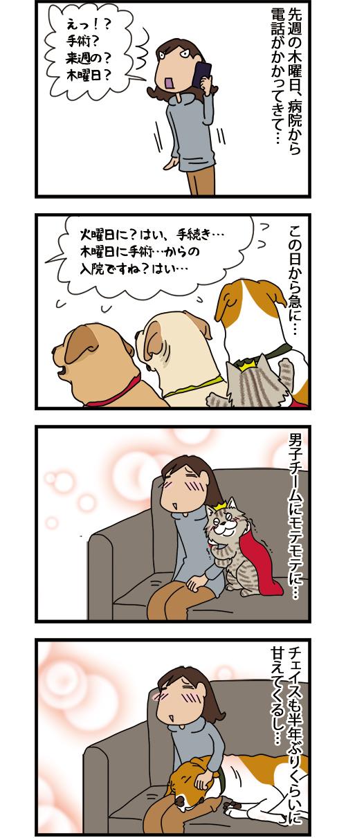20092021_dogcomic_1.jpg