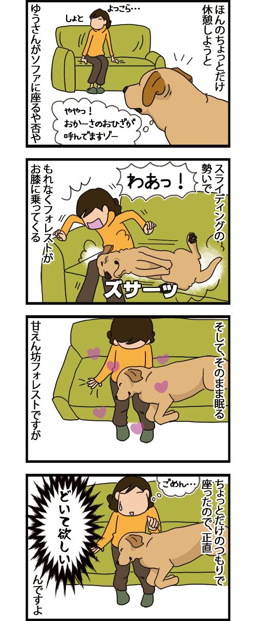 22062021_dogcomic_1.jpg