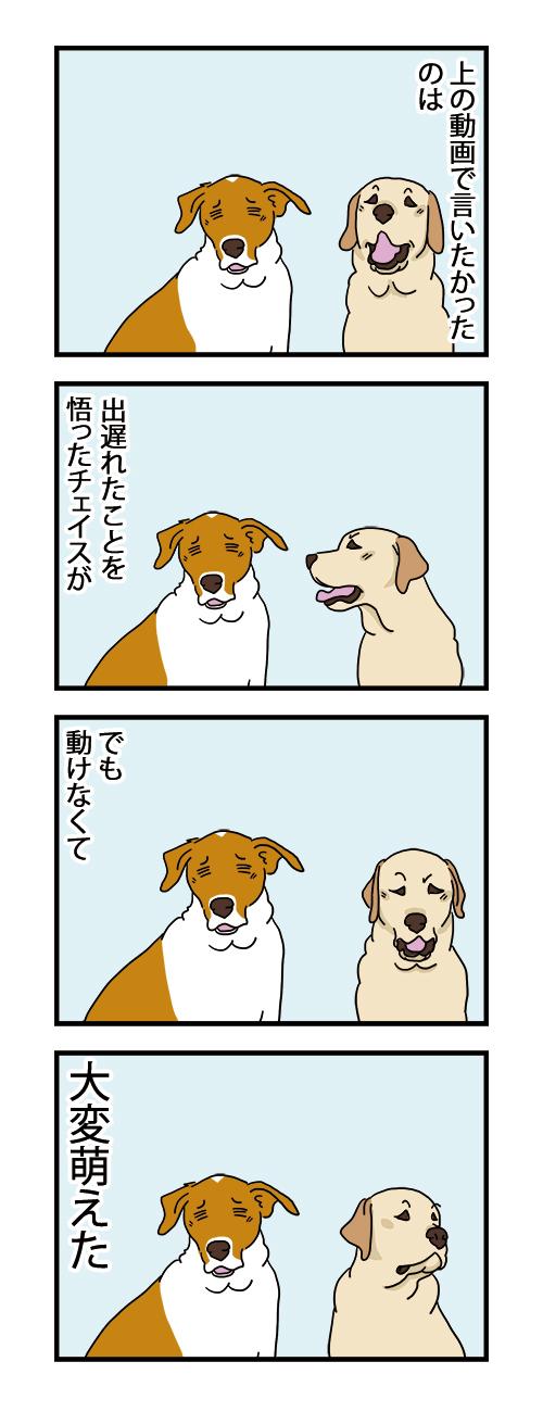 22102021_dogcomic.jpg