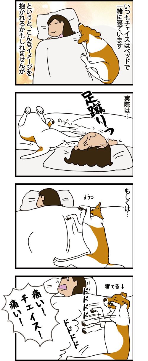 23062021_dogcomic_1.jpg