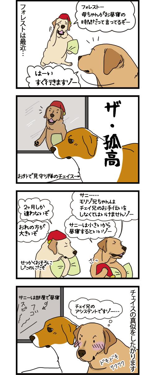24062021_dogcomic_1.jpg