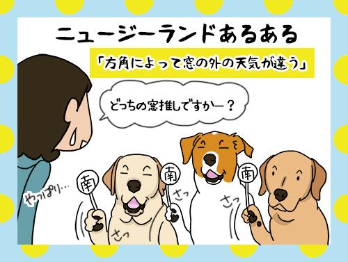 25062021_dogpic3.jpg