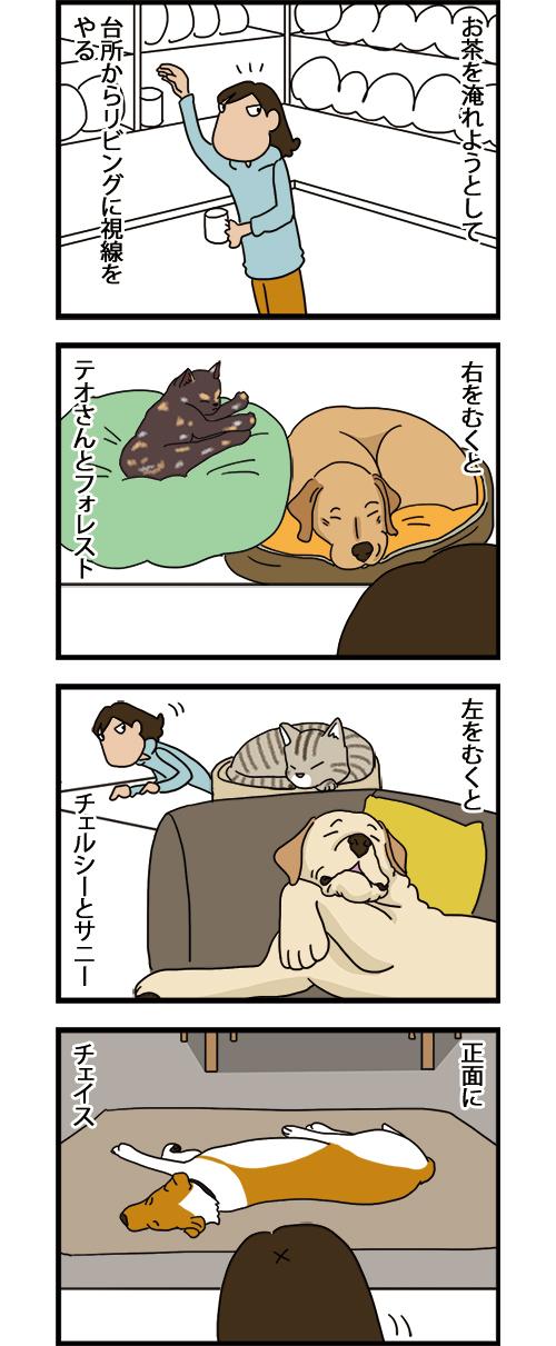 26072021_dogcomic_1.jpg