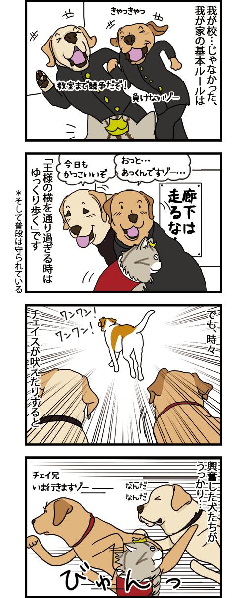 28072021_dogcomicB1.jpg