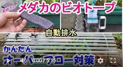 雨対策動画