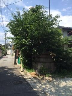お宮橋ビフォー3