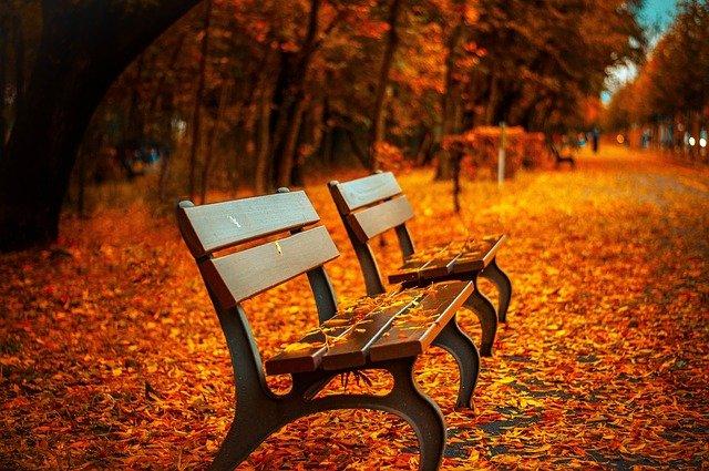 benches-560435_640.jpg