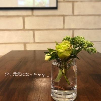 image5_11.jpg