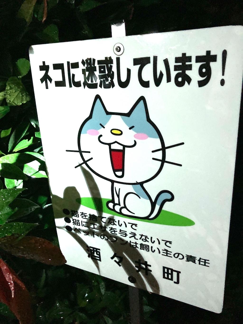 千葉県印旛郡酒々井町:トラバサミによる猫虐待事件:経過報告9/9(夜)