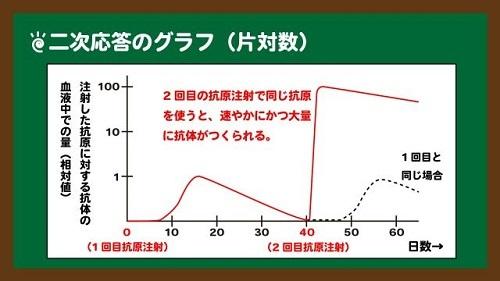 抗体量_グラフ