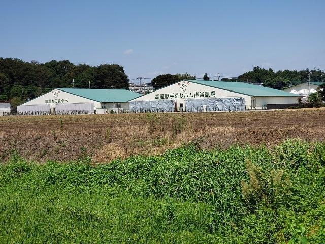高座豚手造りハム直営農場