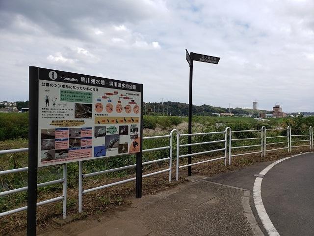 境川遊水地公園ポケットパーク (2)