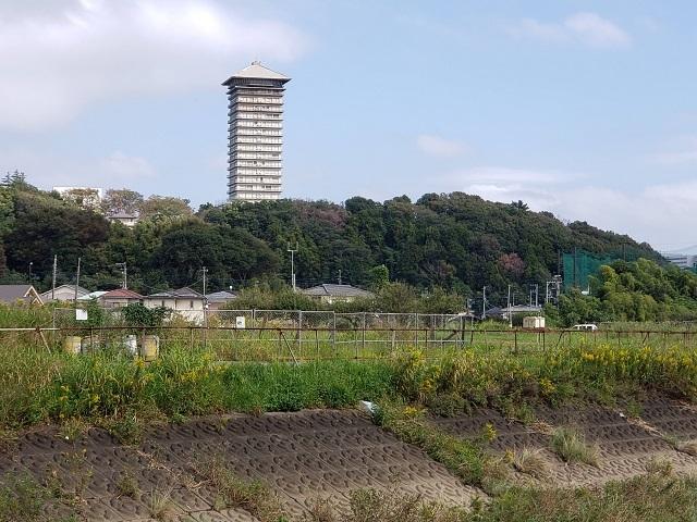 横浜薬科大学図書館