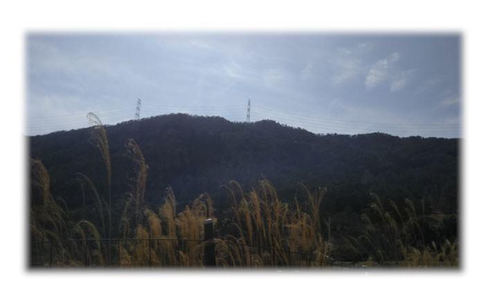 1釈迦ヶ丘