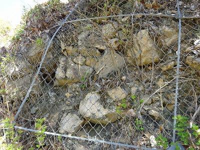 石垣の跡かも