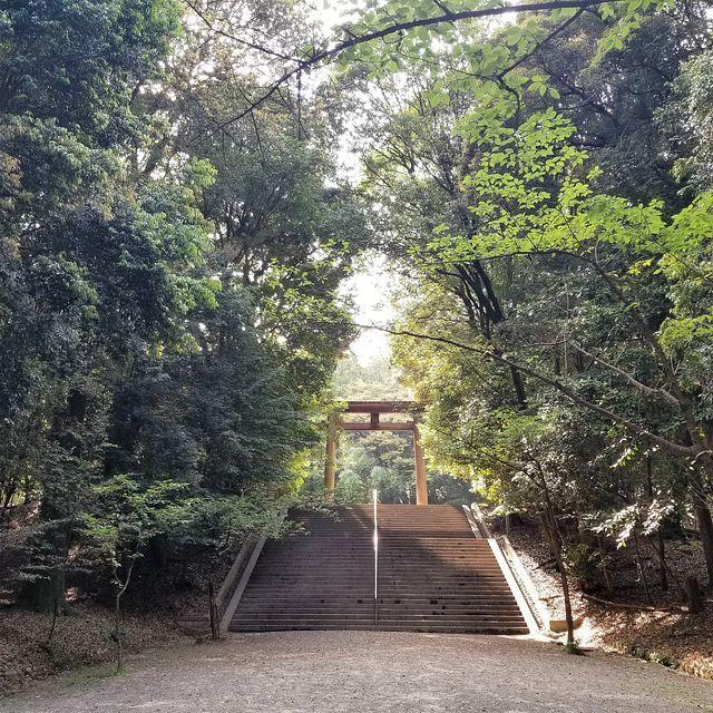 滋賀散歩(小)_019
