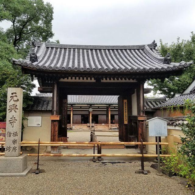 奈良散歩(小)_001