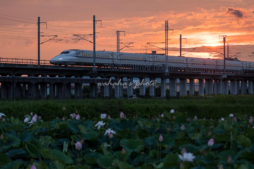 210710kanagasaki-12.jpg