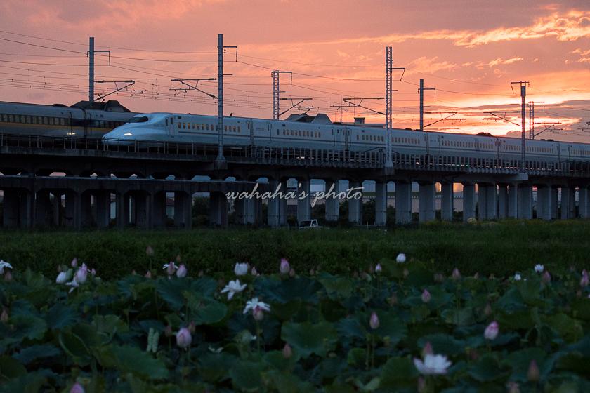 210710kanagasaki-13.jpg
