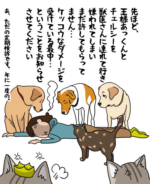 14072021_dog1_mini.jpg